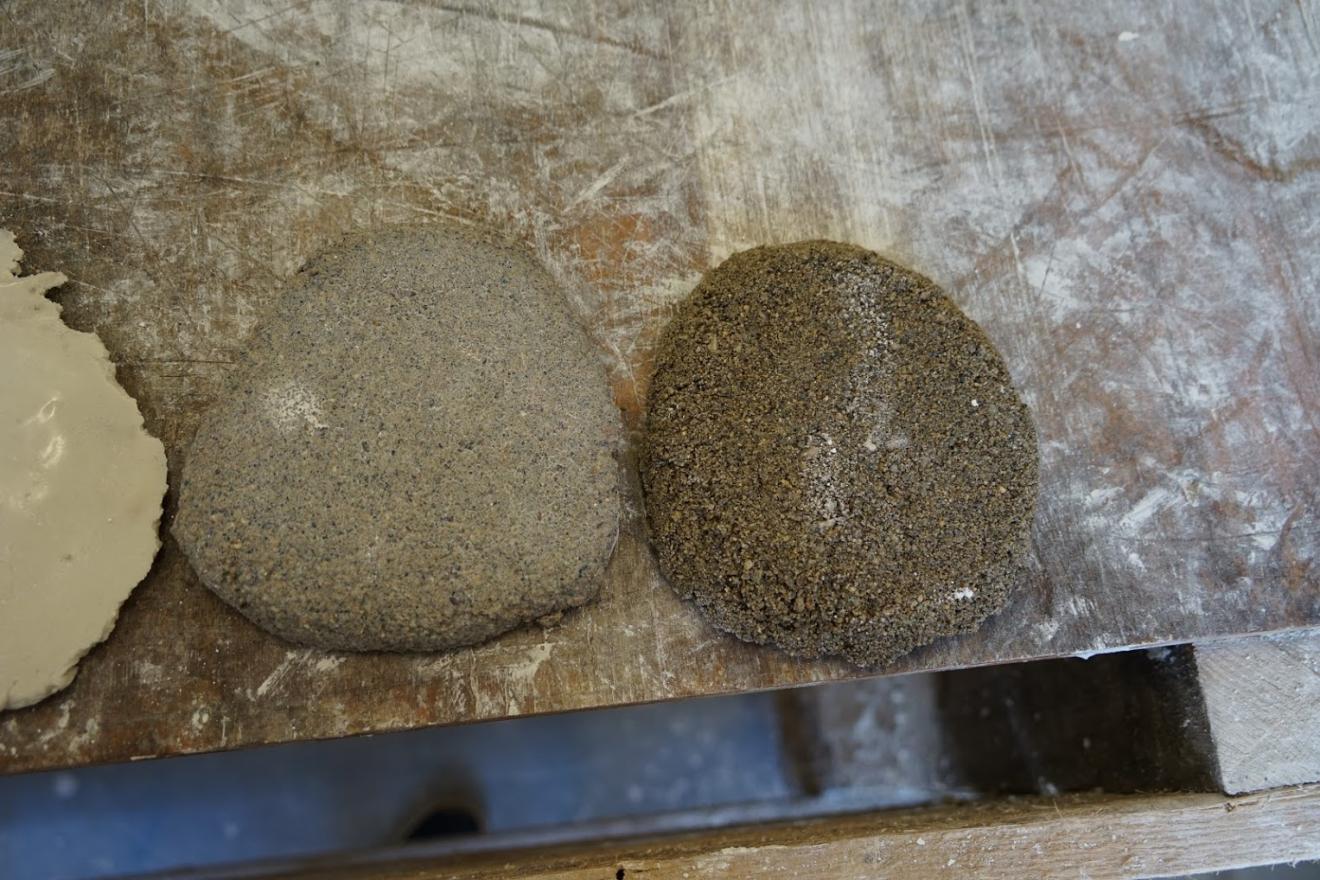 Ako rastie kamenná píniová šiška